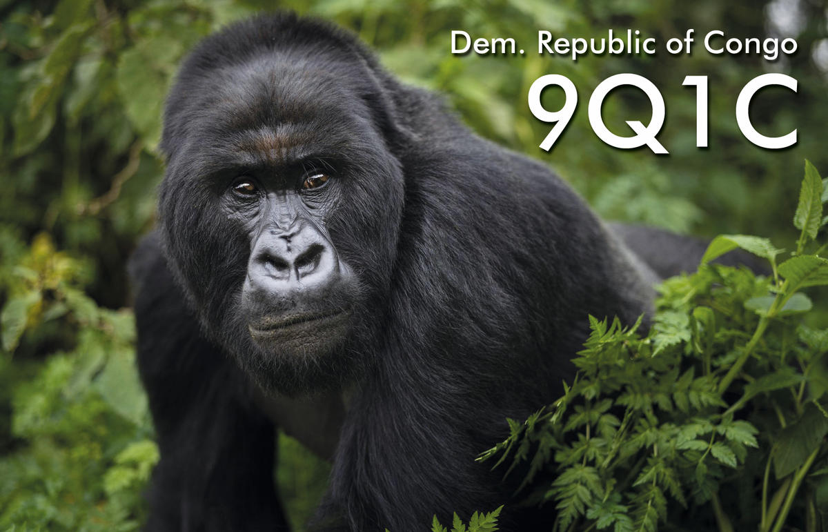 9Q1C – Democratic Republic of Congo