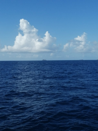 TO0Z team by pass distant Pelikan Key NA-247